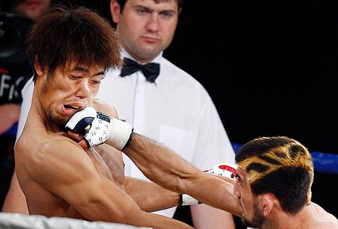 На счету Расула Мирзаева восемь побед в восьми боях