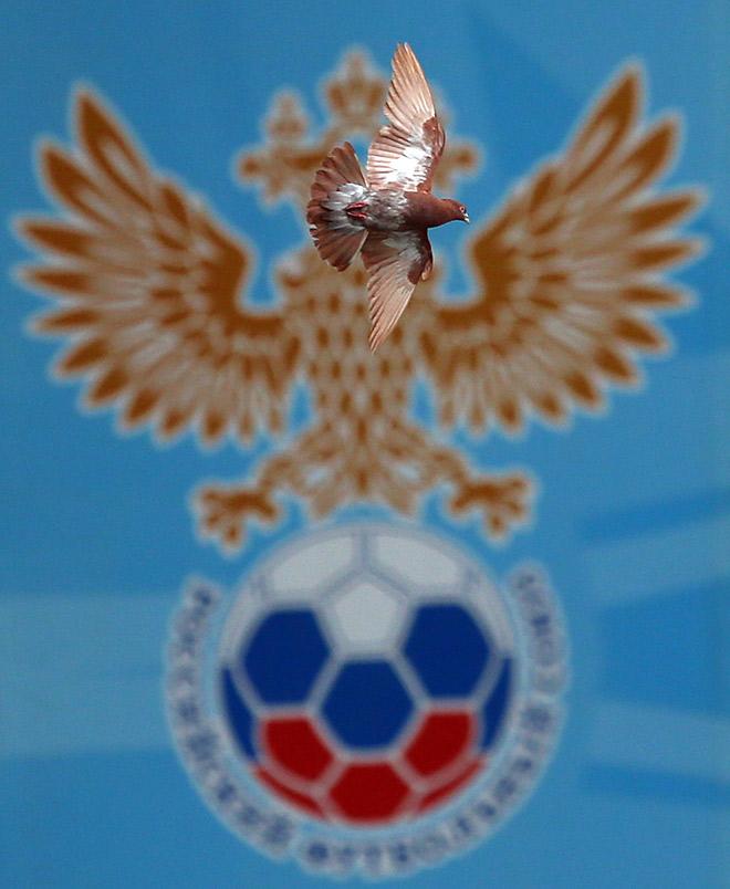Герб РФС