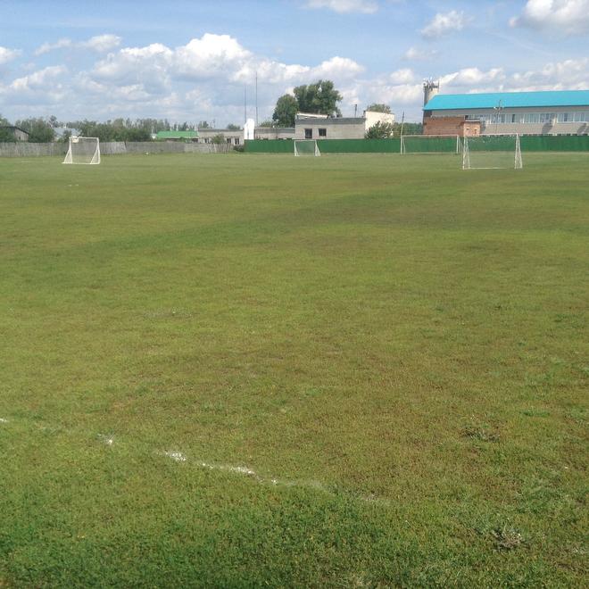 Футбольное поле в посёлке Новая Малыкла Ульяновской области