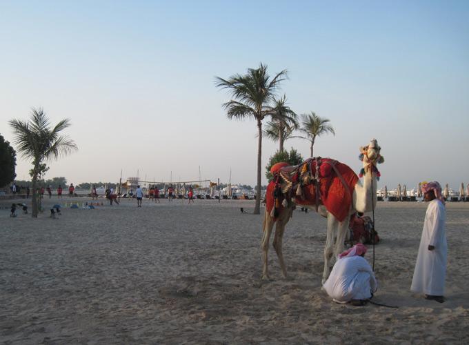 Морской еж - враг «Спартака» в Абу-Даби (Фото)