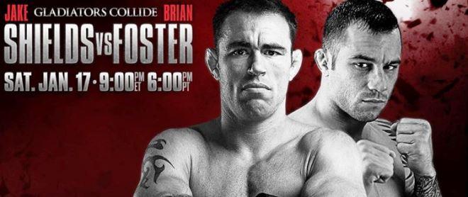Постер к турниру World Series of Fighting 17