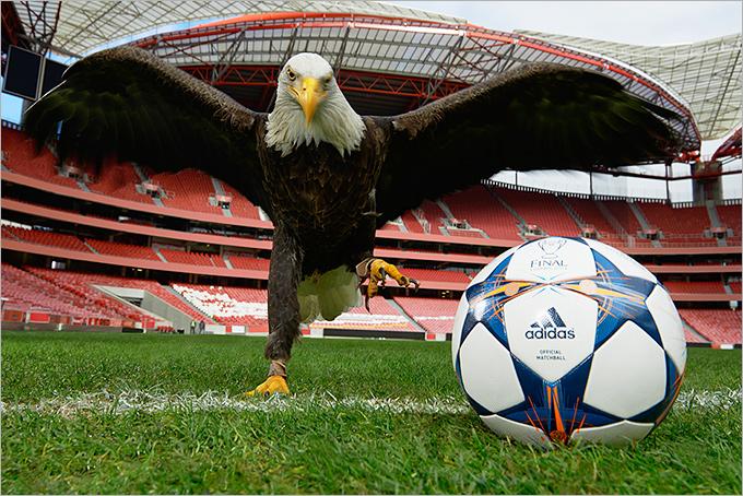 УЕФА представил официальный мяч финала Лиги чемпионов
