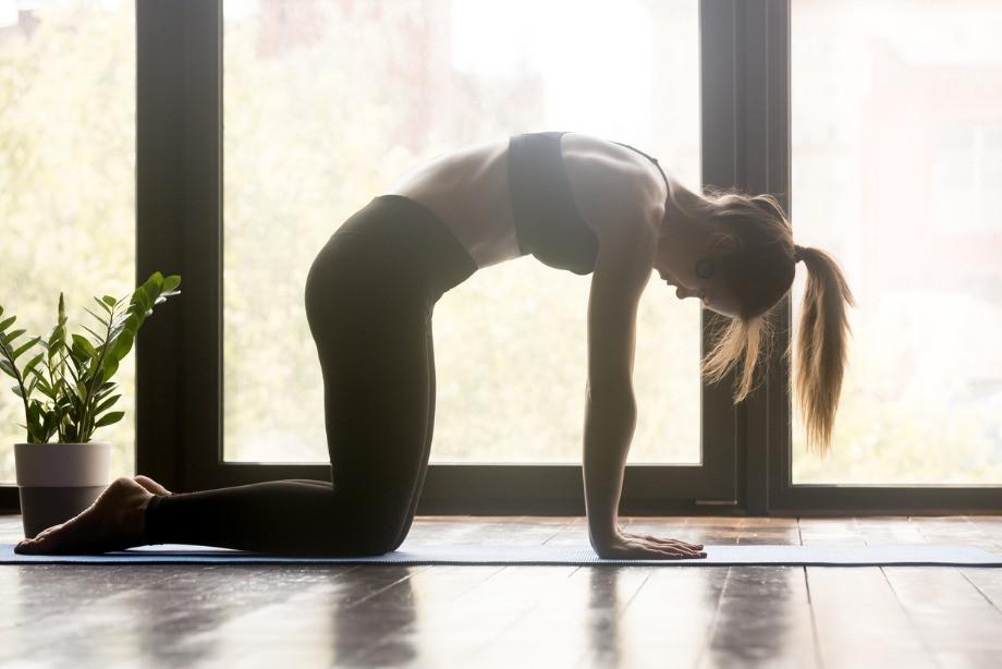 Как избавиться от боли в спине? Простые упражнения, которые можно делать дома