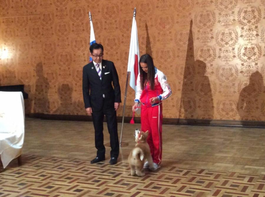 Японцы подарили фигуристке Загитовой щенка породы акита-ину