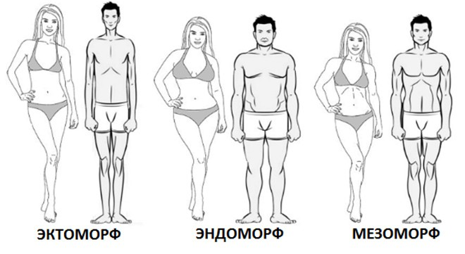 Типы фигур у женщин тест
