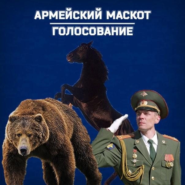 «СКА-Хабаровск» спросил у болельщиков, кого они хотят видеть маскотом клуба