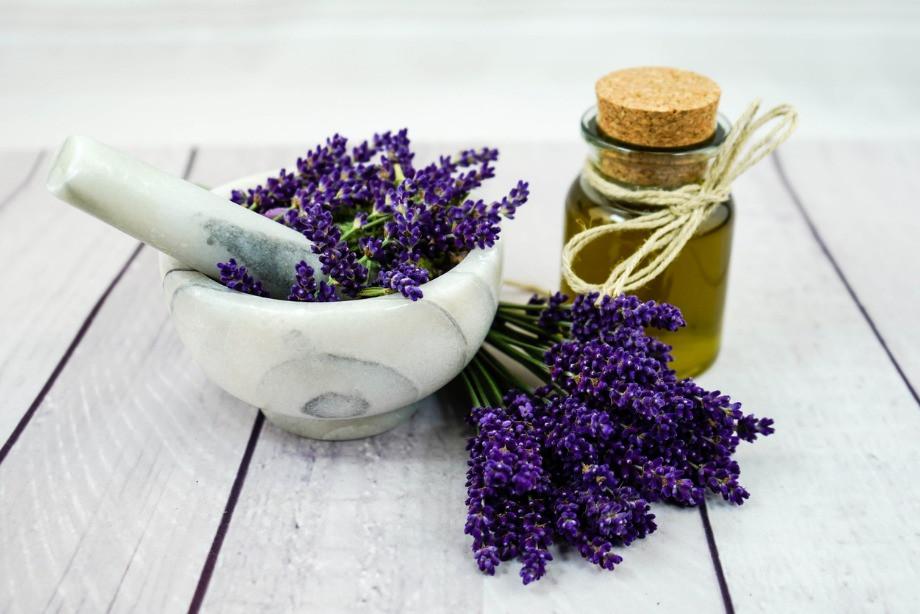Как запахи влияют на настроение и здоровье? Ароматы для похудения. Мнение учёных