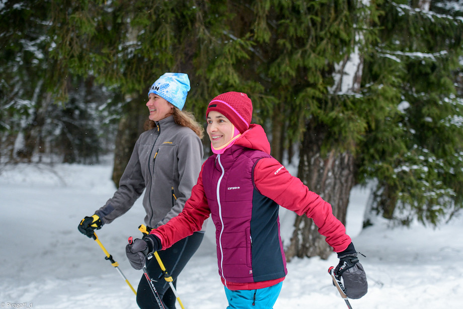 Как правильно выбрать палки для скандинавской ходьбы? Советы эксперта