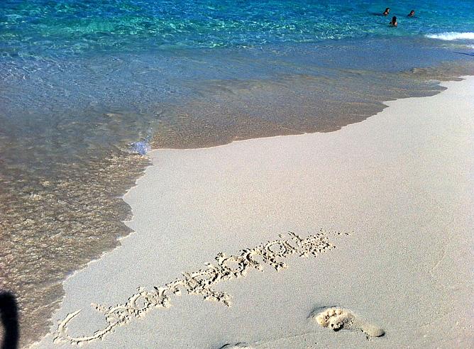 Жаль, что карибские приключения закончились