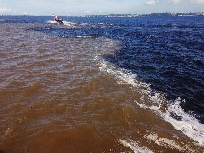 Слияние рио негро и амазонка