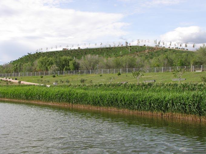 Холм рядом со стадионом
