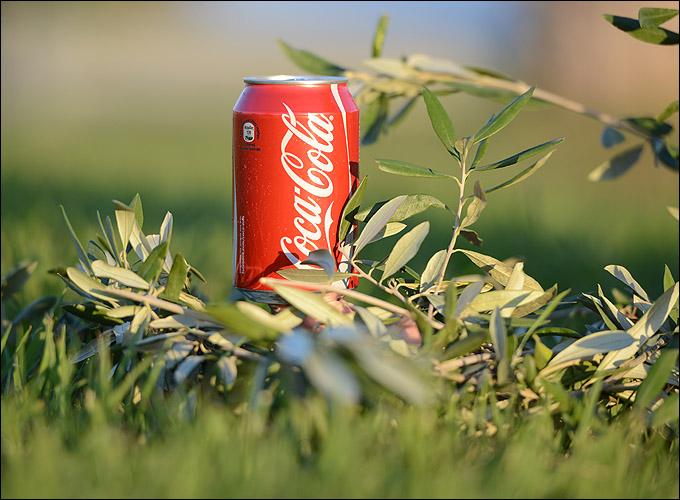 Coca-Cola — представляющий партнёр эстафеты олимпийского огня