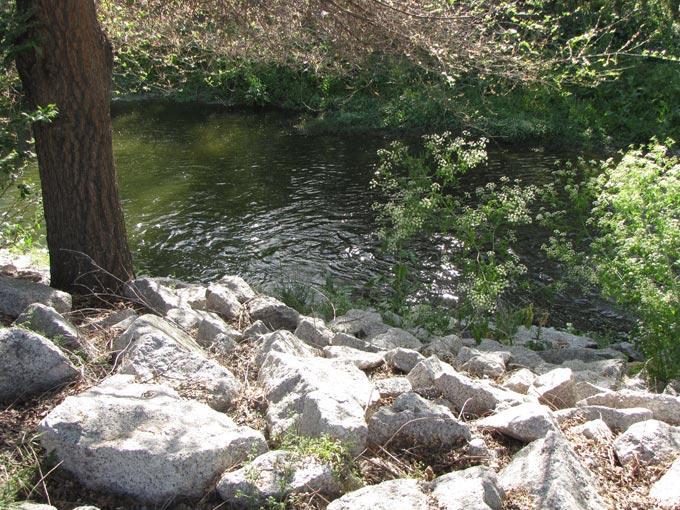 Река на территории комплекса