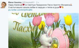 Источник — twitter.com/EVesnina001