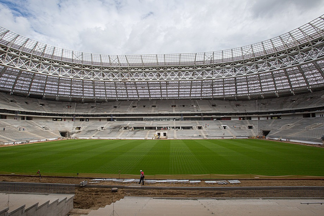 """Естественный газон стадиона """"Лужники"""""""