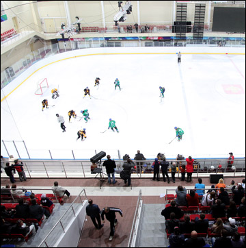 В хоккей играют настоящие… девчонки