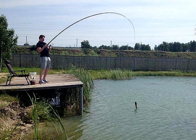 Ловись рыбка большая и маленькая. Источник — @khl