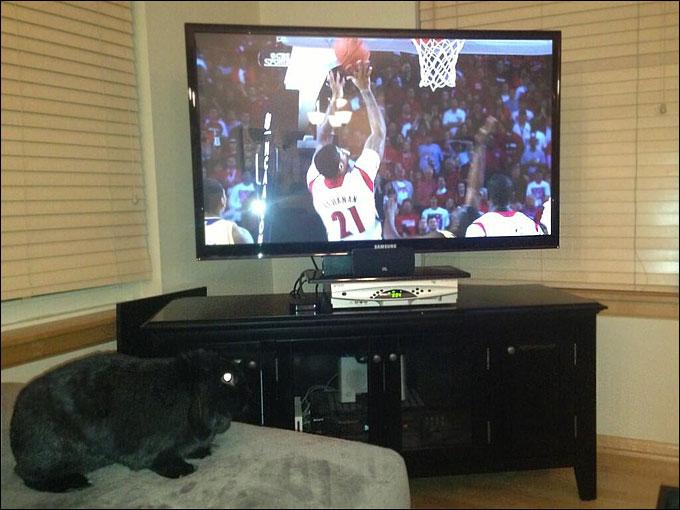 Конопка: Хоппи впечатлён уровнем баскетбола в финале NCAA
