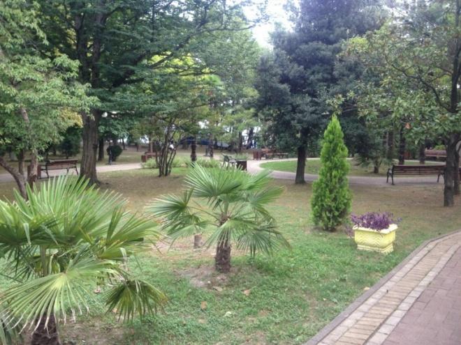 Опустевший парк имени Фрунзе в Сочи