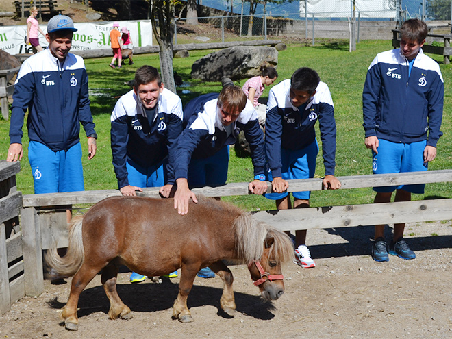 Игроки «Динамо» и пони