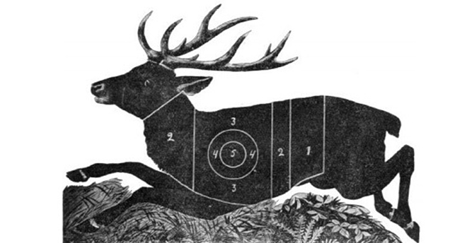 Мишень «бегущий олень»