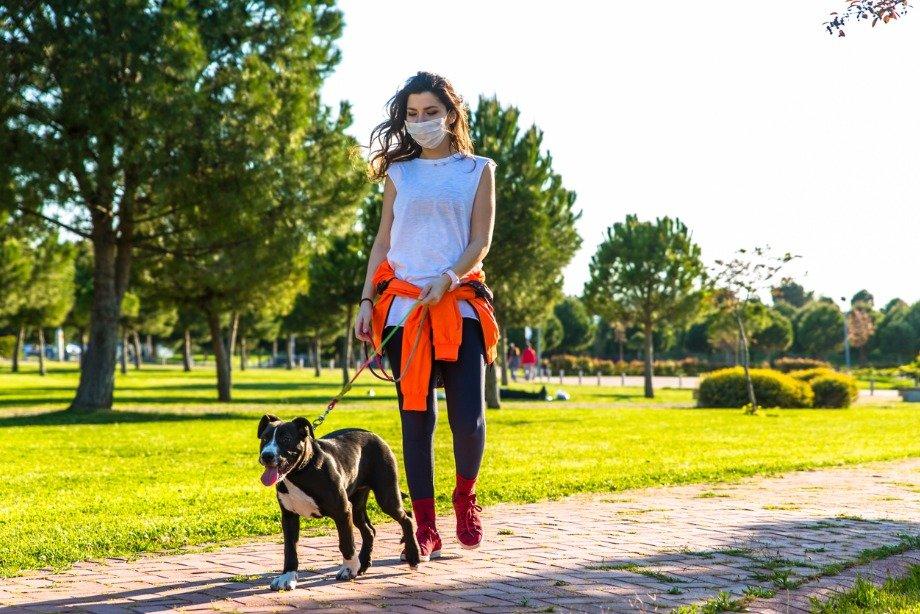 Почему важно гулять на свежем воздухе: мнение психолога