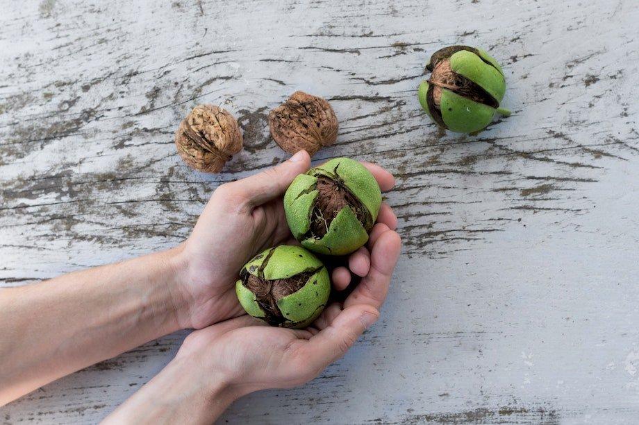 Толстеют ли от орехов, учёные доказали, что нет, можно ли есть орехи при похудении и какие