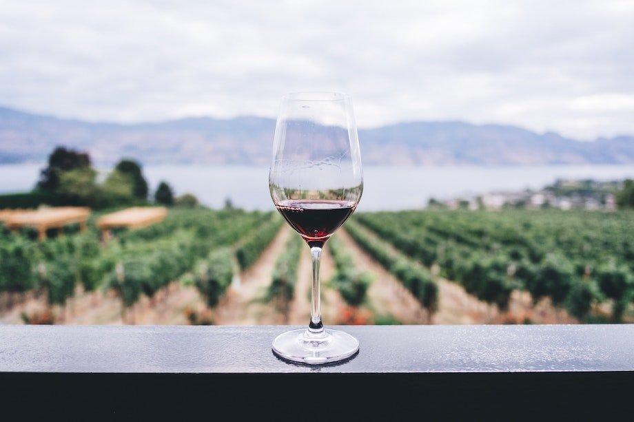 Почему нельзя пить алкоголь перед тренировкой, физические нагрузки и алкогольные напитки