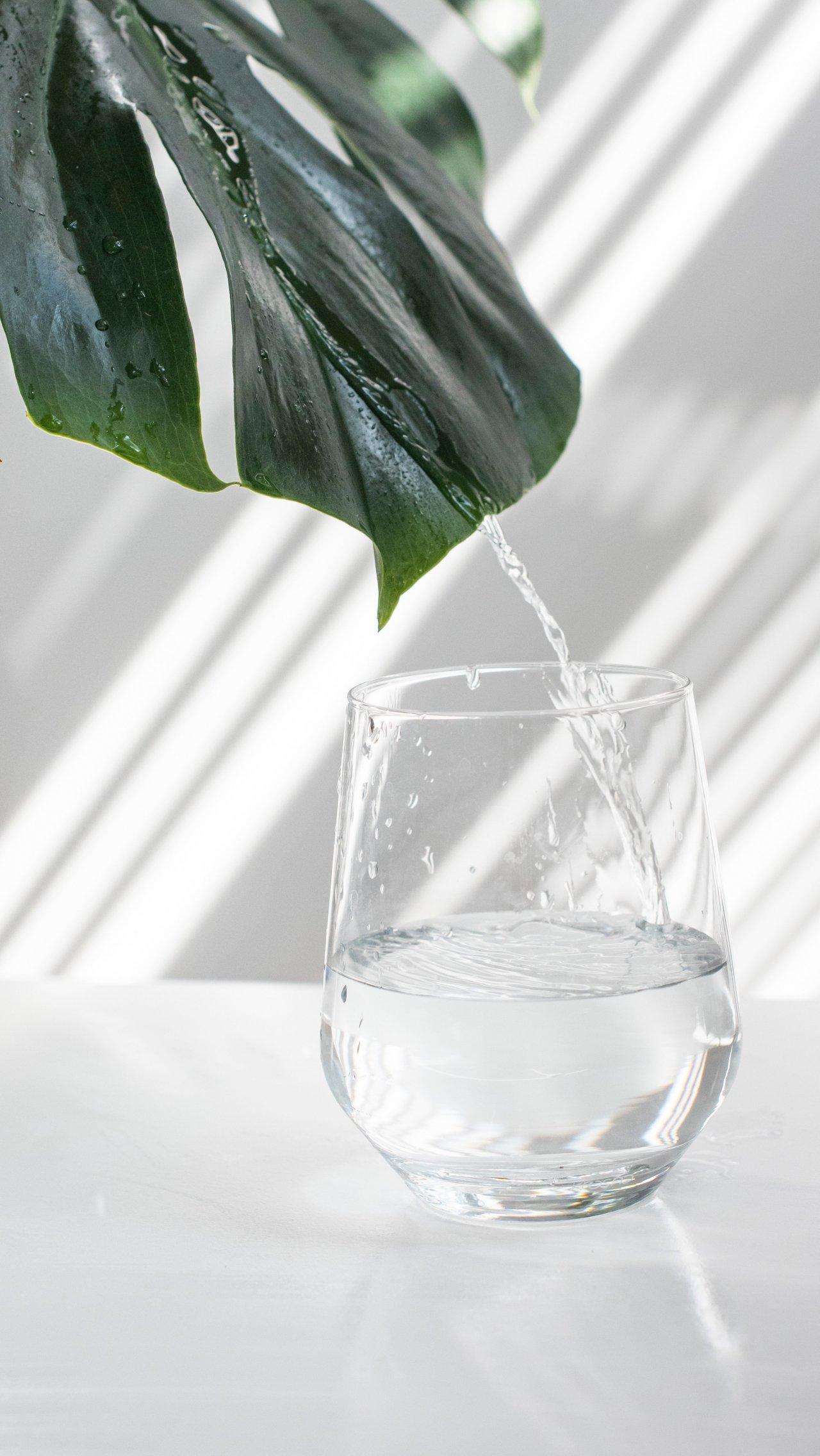 Не надо так: почему нельзя запивать еду водой