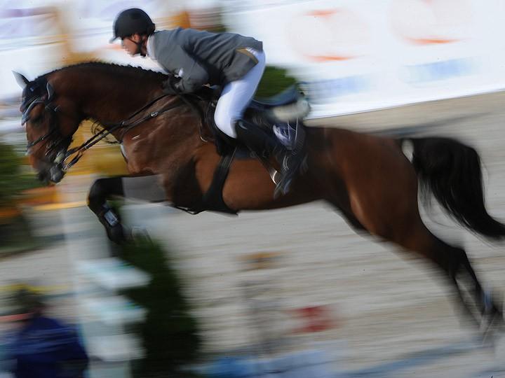 Татьяна Федотова – о тренерской работе в конном спорте