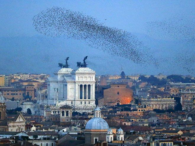 Екатерина Бычкова о Вечном городе Риме