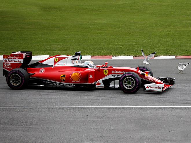 Гран-при Канады Формулы-1 глазами западных СМИ
