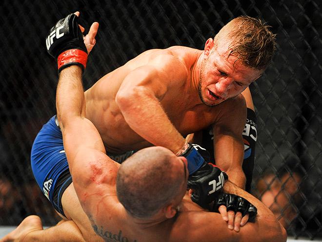 Ти Джей Диллашоу – Доминик Крус на UFC Fight Night 81 17 января