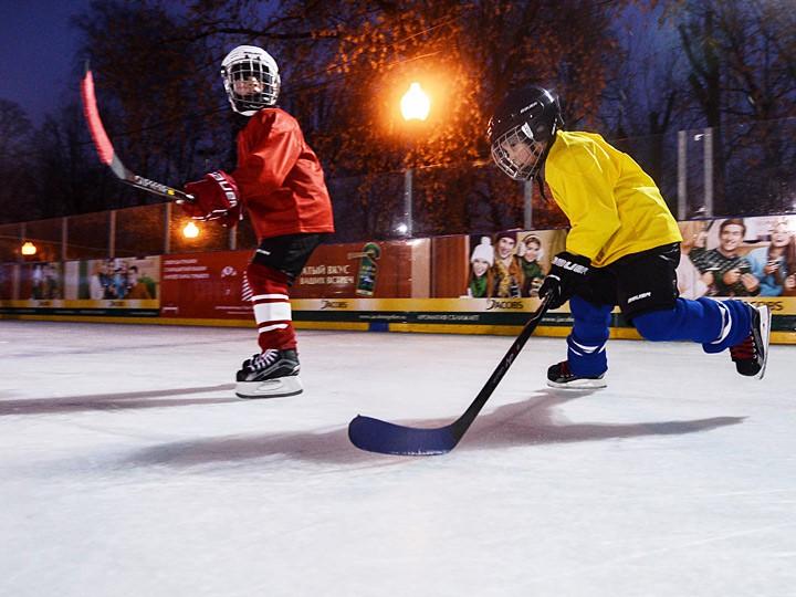 Цены на занятия хоккеем в центральном регионе: «Локомотив», «Витязь»