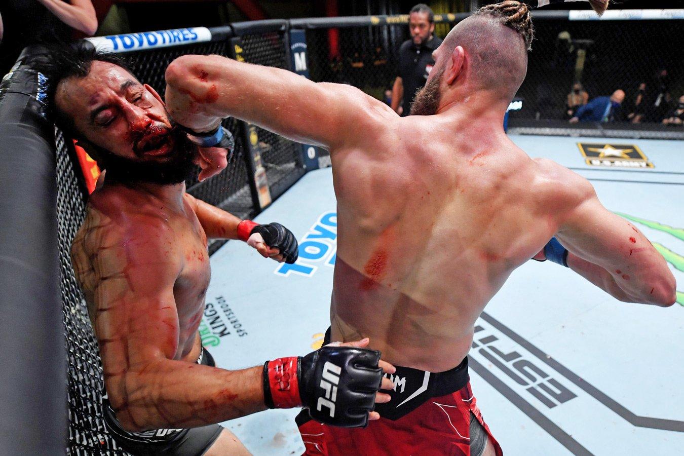 UFC: появился новый кандидат на звание нокаута года!