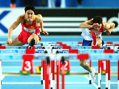 Рейтинг спортивных наций 2013 года