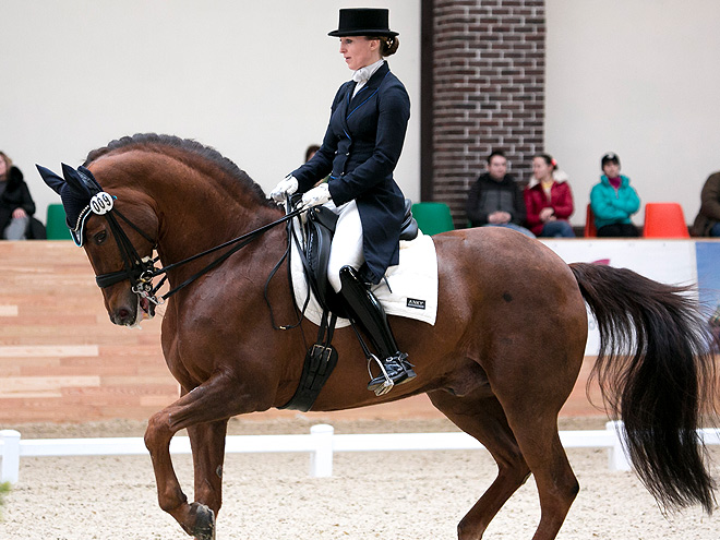 Всадница Наталья Шадрина – о том, как делить лошадь на троих
