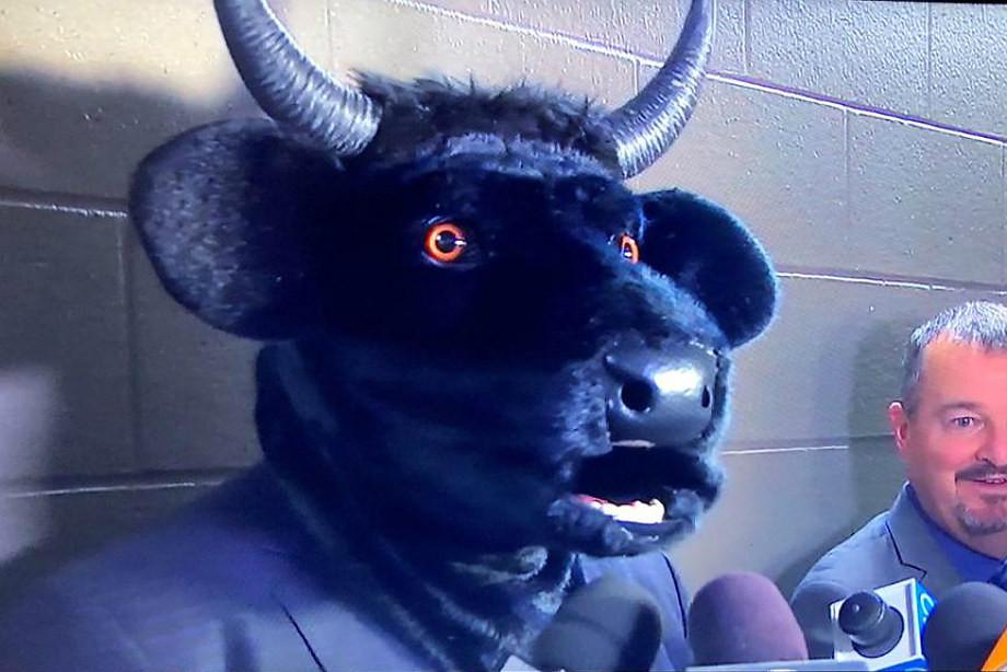 Тренер «Нэшвилла» надел голову быка на пресс-конференцию. Смешно до слёз