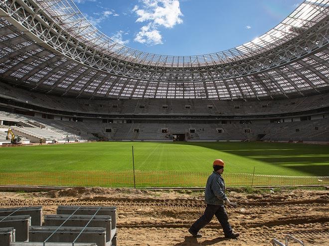 лужники стадион новый фото