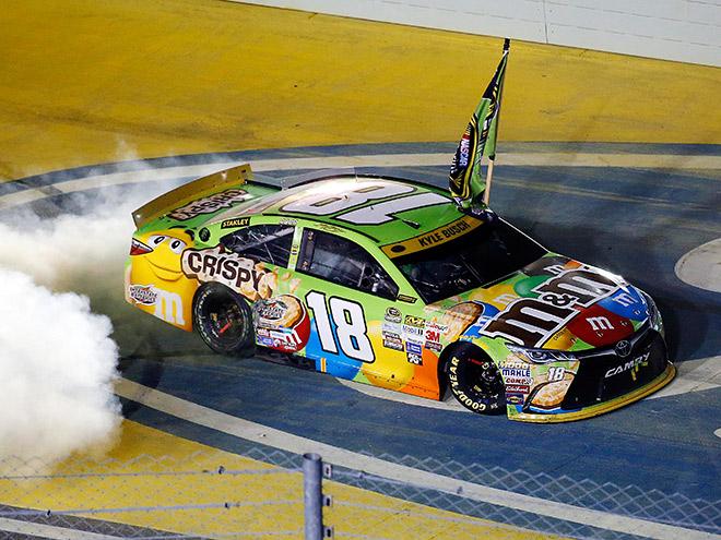 Кайл Буш стал новым чемпионом NASCAR Sprint Cup