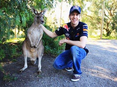 Австралия: знаете ли вы?