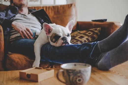 Поели — можно и поспать? Что нельзя делать сразу после еды