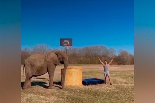 Удивительный мировой рекорд – девушка раскрутила 107 обручей весом 23 килограмма