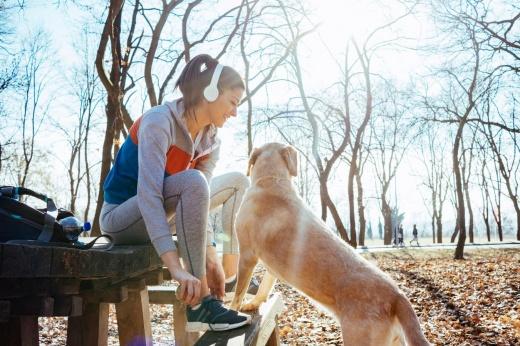 Как весело и интересно провести время с питомцем: что делать на прогулке с собакой