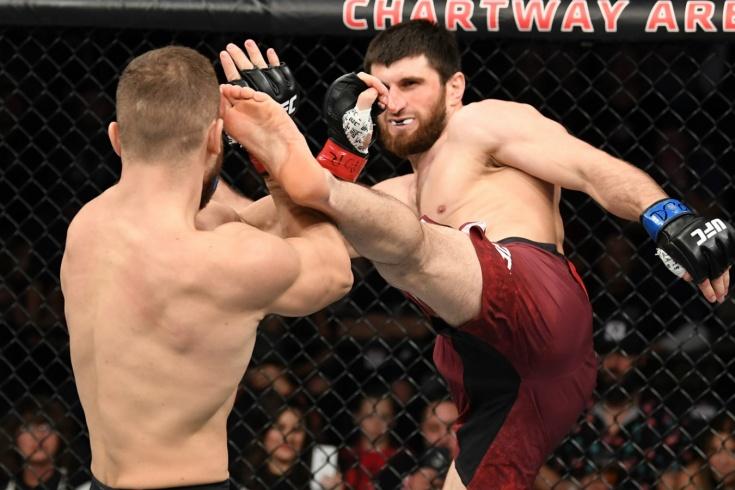Магомед Анкалаев — Ион Куцелаба, эксклюзивное интервью перед боем на UFC 254