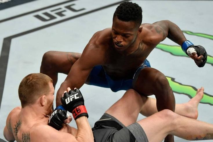 UFC 263: Адесанья — Веттори 2, Терренс Маккинни за 7 секунд нокаутировал Мэтта Фреволу, видео рекорда