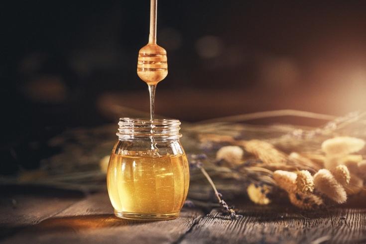 Полезен ли мёд?