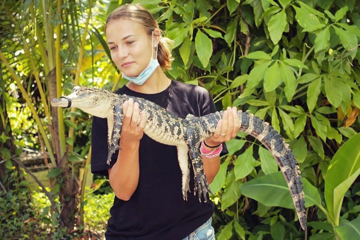 Пока Калинская пыталась приручить крокодила, Кирьос нашёл новую подружку