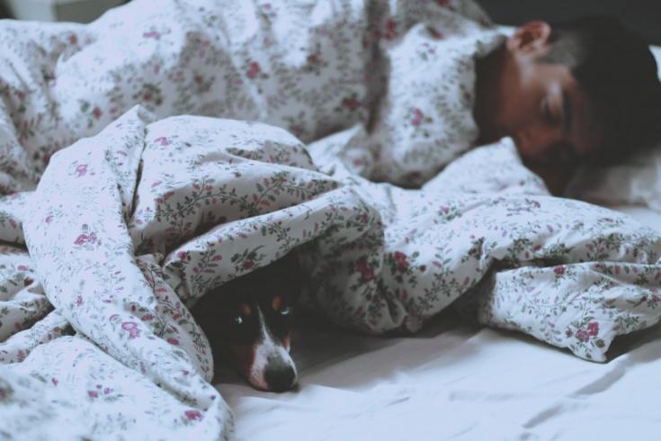 Почему наши предки спали дважды за ночь?