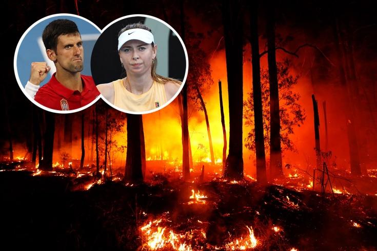 Шарапова и Джокович ведут борьбу с пожарами